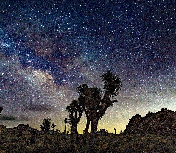 Image depicting Joshua_Tree_National_Park_Night_Sky, Night