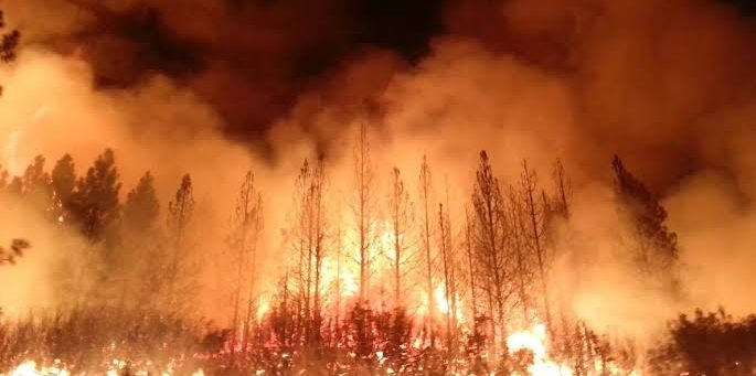 Wildfires in USA