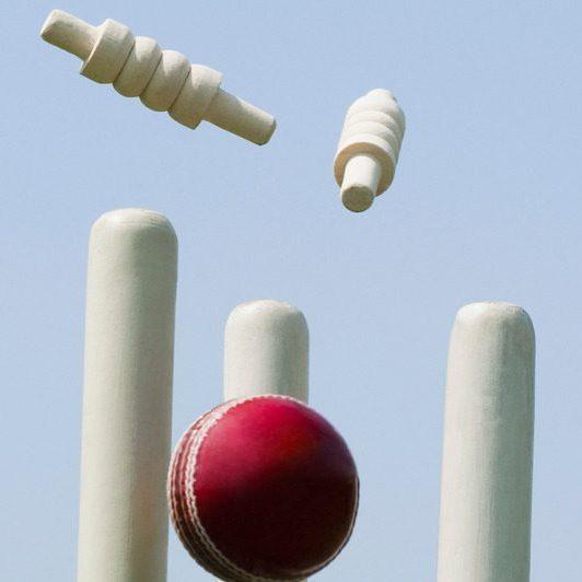 Image depicting cricket