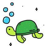 Image reflecting turtle, turtle day