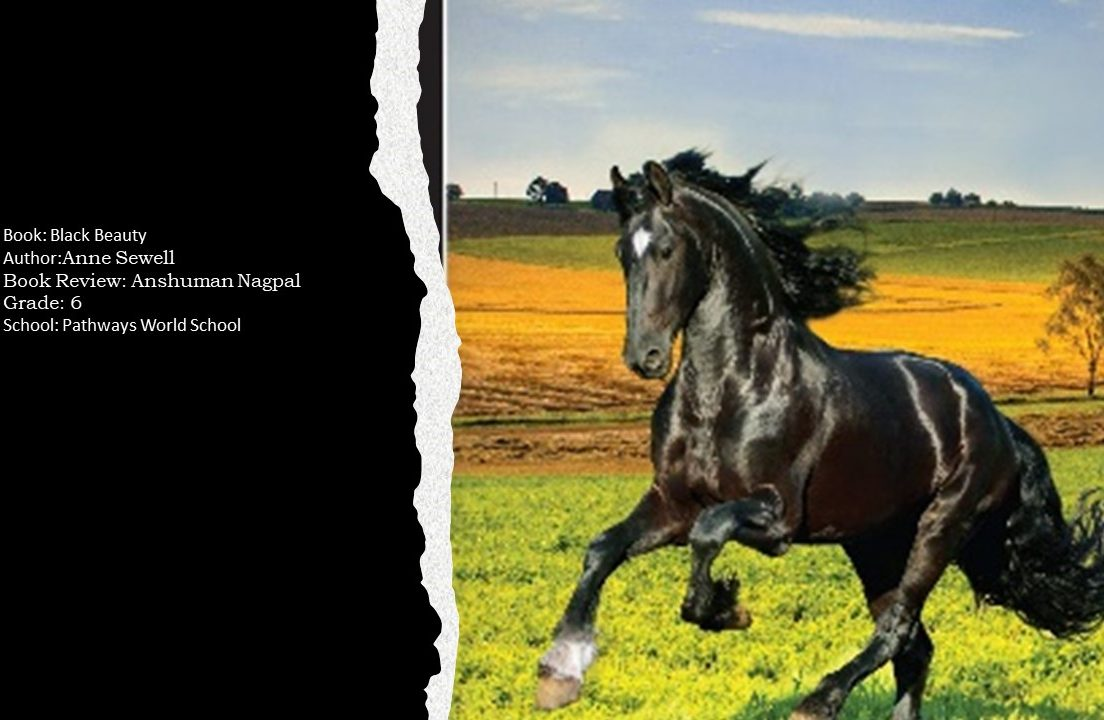Image depicting the book review of black beauty