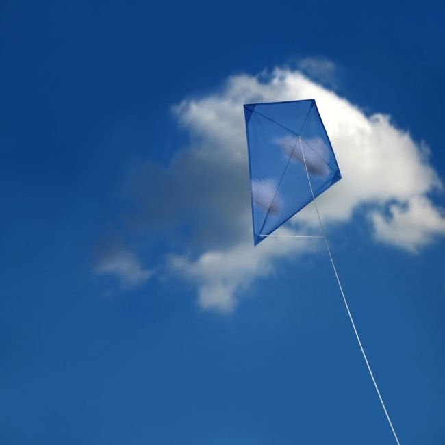 Kite flying is a professional sport
