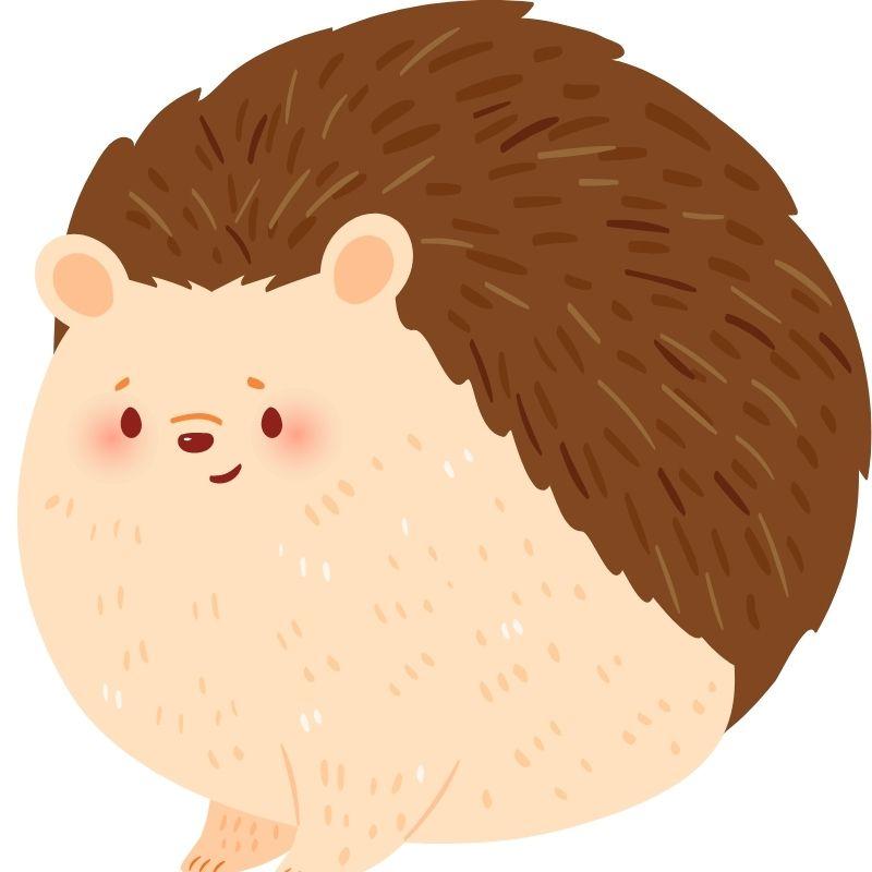 Image depicting hedgehog, as in, Homemade crossing signs help hedgehogs cross road