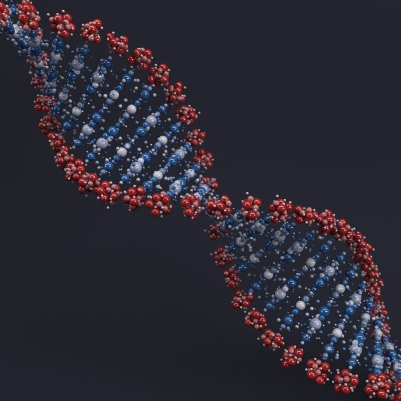 Image depicting DNA, as in, Only a small percentage of our DNA is 'unique' to us